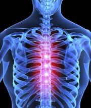 qigong-healing-spine